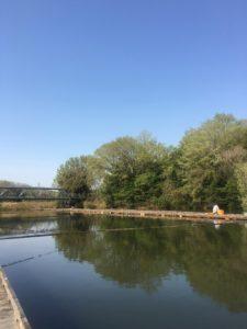 2年ぶりのひだ池単独釣行ウドンセット