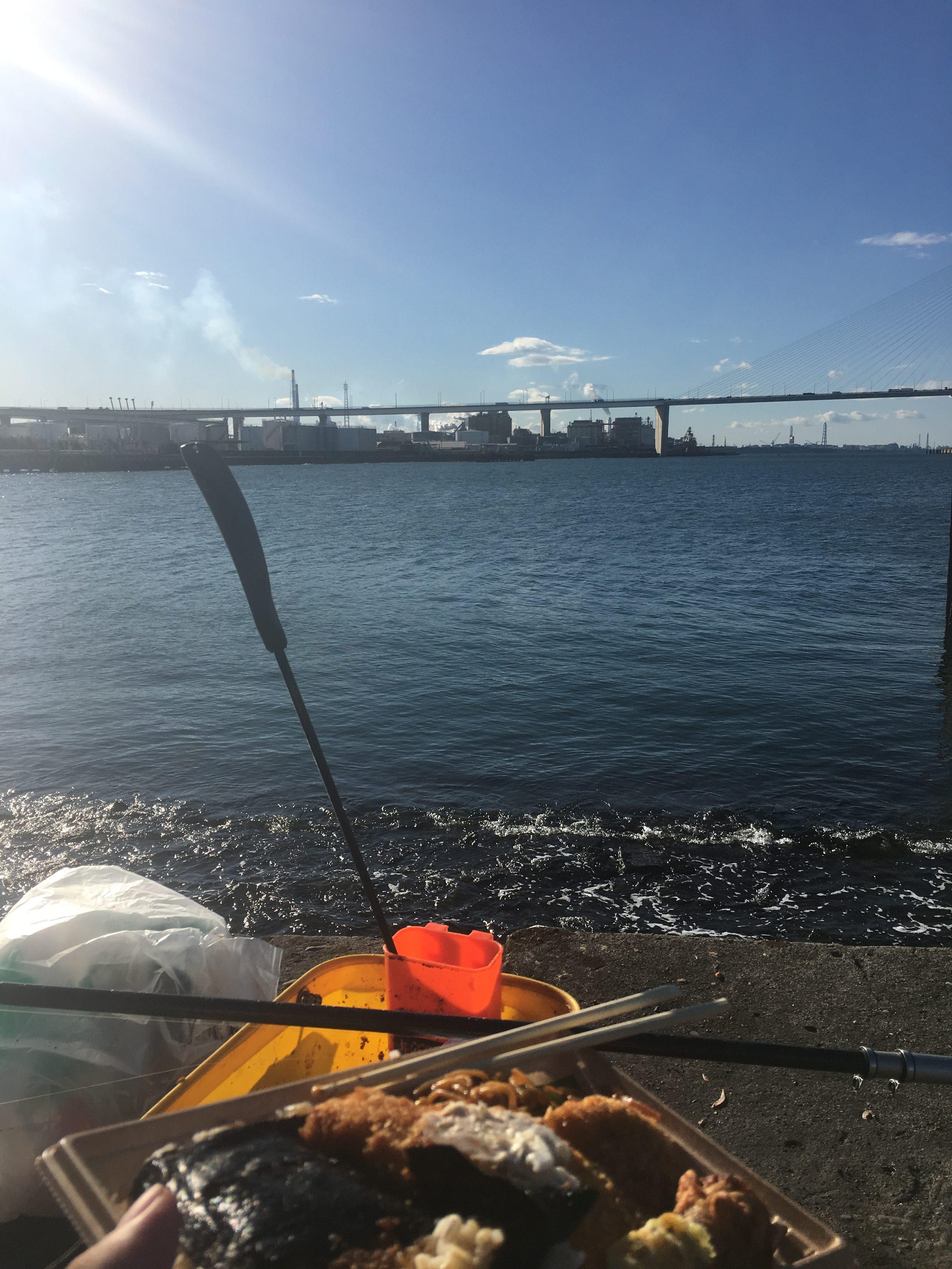 名古屋港9号地ウキフカセでチヌ 風速5メートル天気明朗なれども波高し