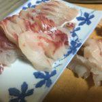 【2018秋版】名古屋港のチヌ・クロダイを食う