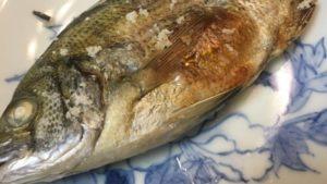 名古屋港9号地のチヌを食う