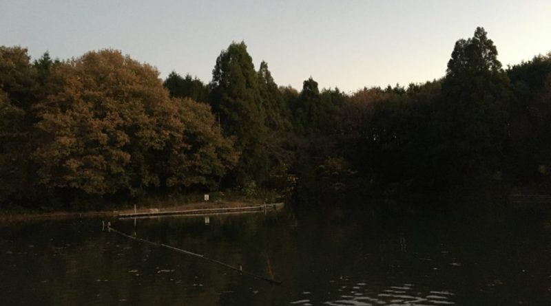 ひだ池 昼からグル宙で相変わらず好調