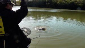 「へら正館」さんとコラボ!数年ぶりの風越池で良型【へらぶな釣り】